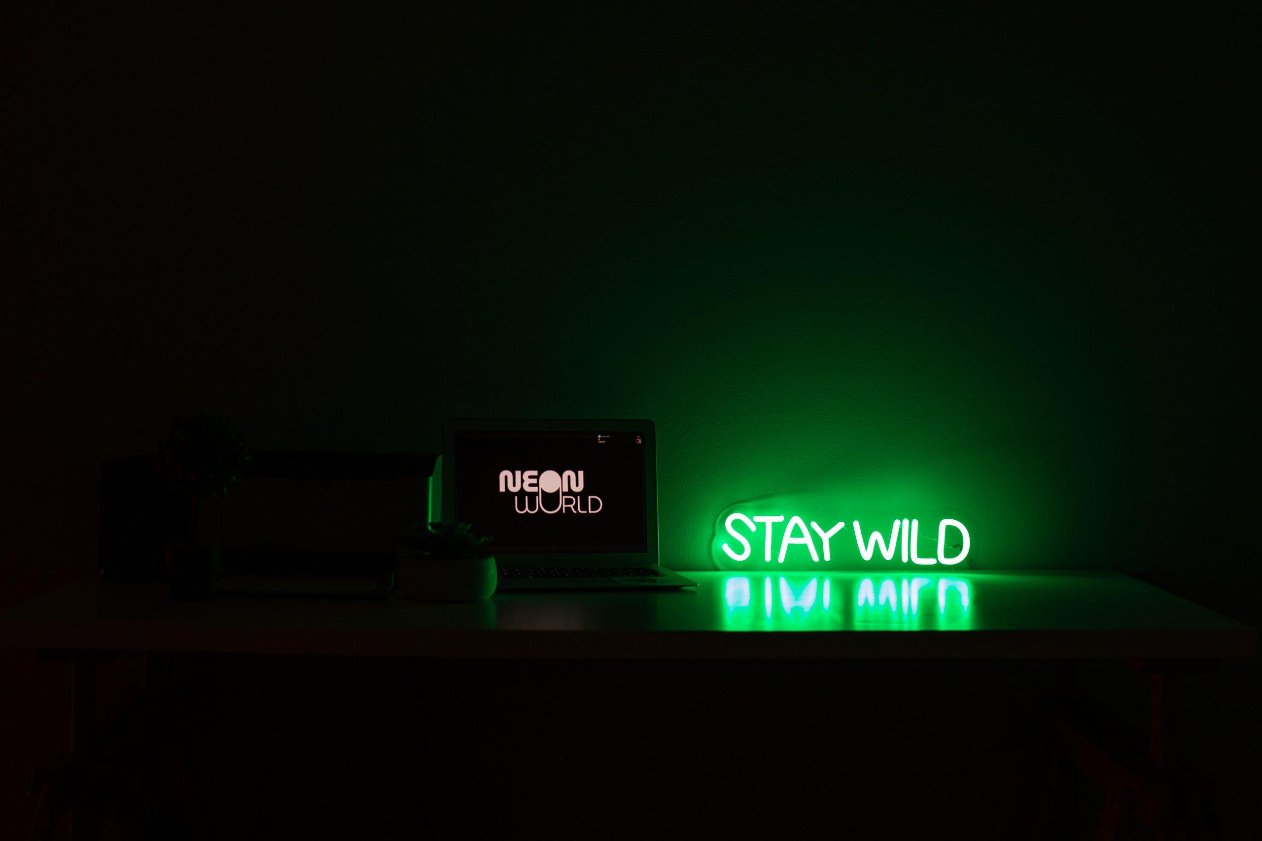 21. Stay Wild 40cm